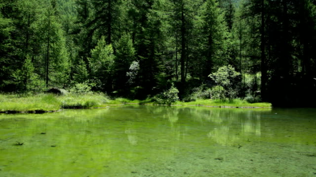 Monal Lake video