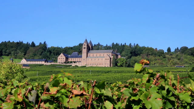 kloster in den vineyards - kloster stock-videos und b-roll-filmmaterial