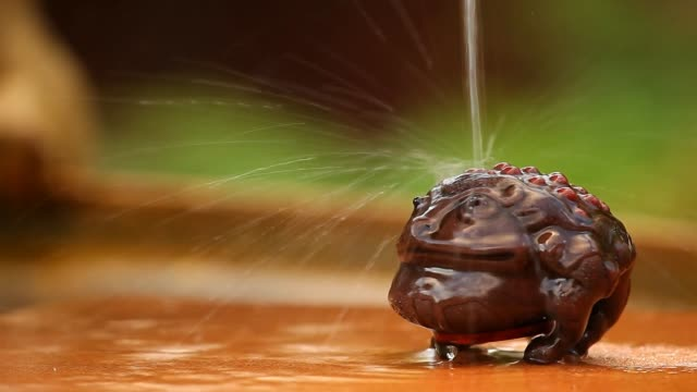 Money Toad Water drops video
