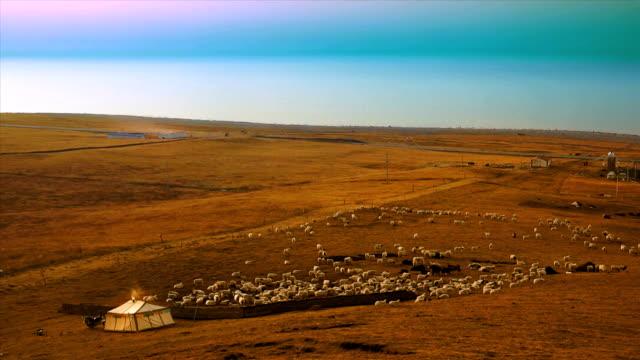 Mongolian Yurts video