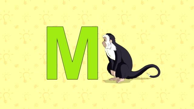 Scimmia. Inglese ZOO DI di alfabeto Lettera M - video