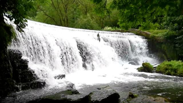 Monsal Head Weir, Peak District National Park video