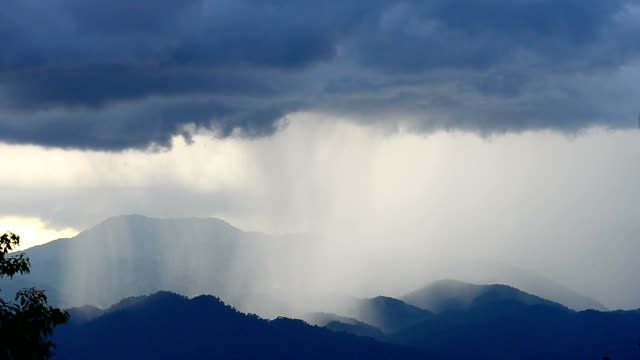Monsoon in tropical rain forest . video