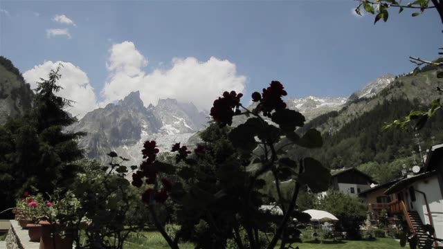 mont blanc mountain range snow on top view far from villa plants in flowerpots. cozy countryside garden in italian alps massif with geranium and bee fly. famous european tourism alpinism destinations - courmayeur estate video stock e b–roll