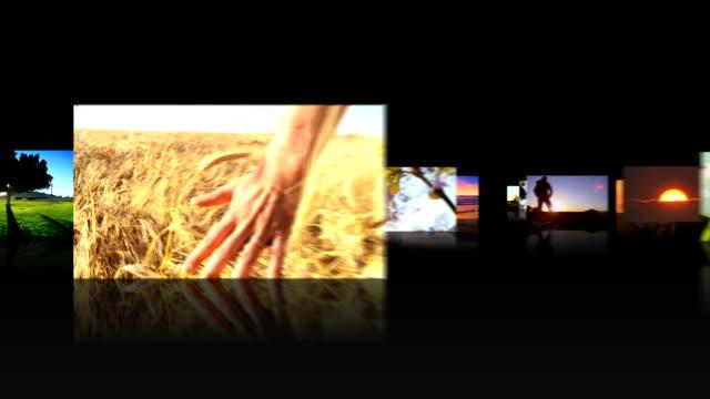 3D Montage Images Human Lifestyle Events video