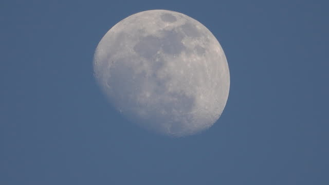 Moon day