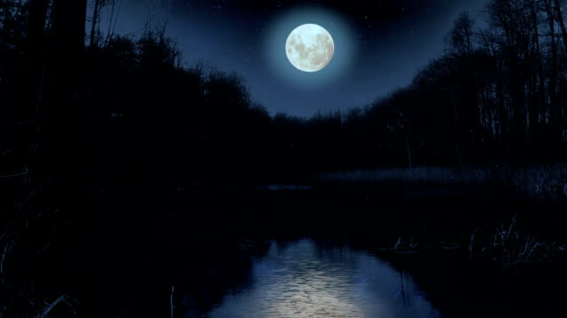 stockvideo's en b-roll-footage met moon over the lake at night. - broek