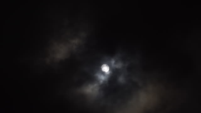 moon - d'atmosfera video stock e b–roll