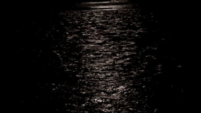 Moonlight night video