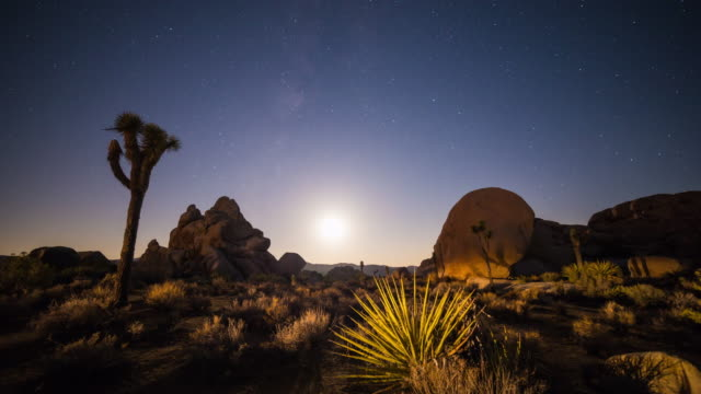 Moonset Timelapse With Milky Way and Perseid Meteor Shower video