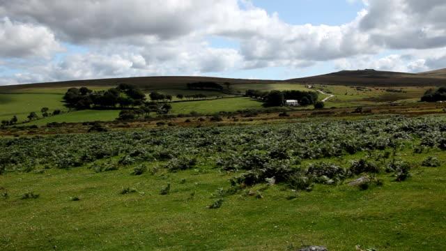 moorland video