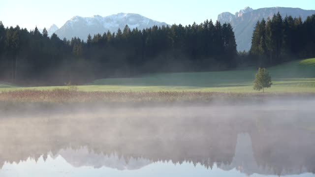Morning at the lake with mountains, fog, reed, Attlesee, Nesselwang, Allgäu, Alpen, Bayern, 4K video
