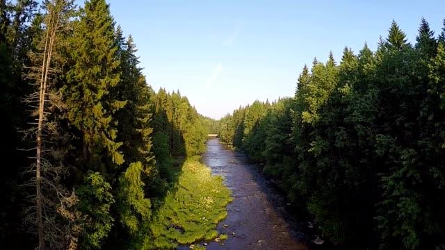 朝には、川 ビデオ