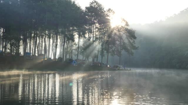 stockvideo's en b-roll-footage met ochtend sfeer bamboe rafting toerist over het meer pang ung bosbouw plantages, maehongson province, ten noorden van thailand azië. toeristische attracties ontspannen met de natuur. pan camera slow motion - paddle