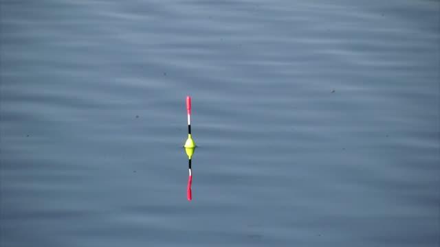 morgen angeln - fischköder stock-videos und b-roll-filmmaterial
