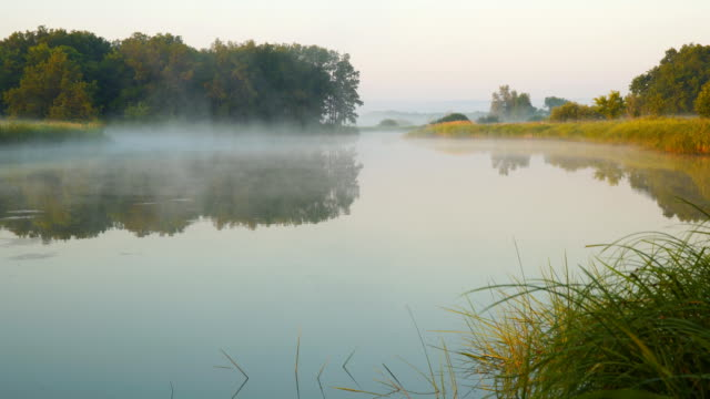 Morning fog on a quiet lake video