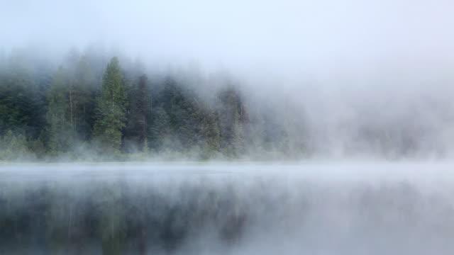 vídeos de stock e filmes b-roll de hd manhã de nevoeiro no lago - nevoeiro