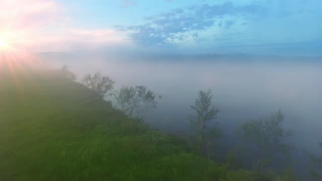 Morning fog on lake video