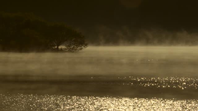 vídeos de stock e filmes b-roll de morning fog on the lake - margem do lago
