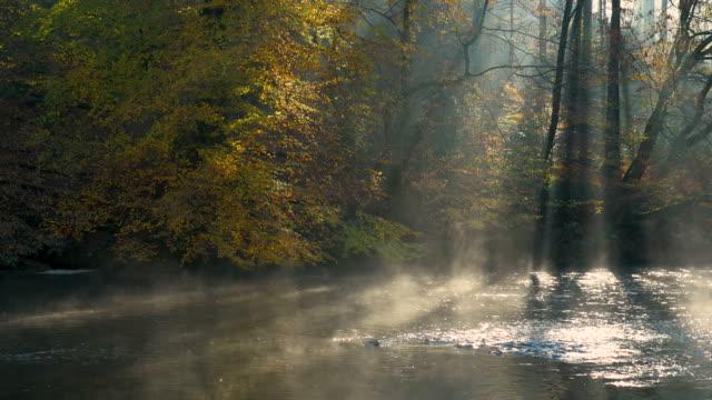 vídeos y material grabado en eventos de stock de niebla matutina en el río, wupper, alemania - charca