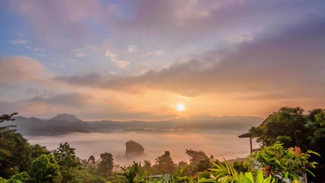 Morning Mist and sunrise at Tropical Rain forest. video