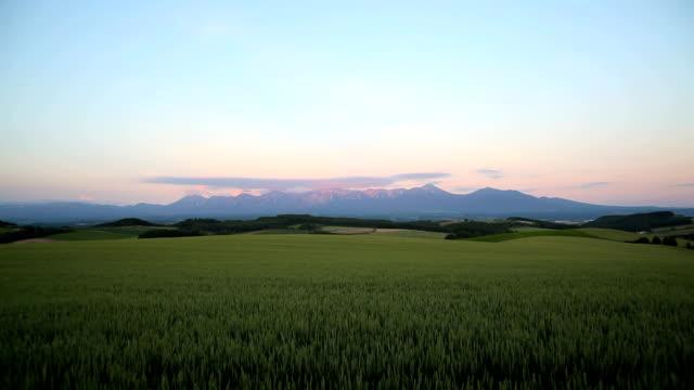 朝の山々や小麦のフィールド - 北海道点の映像素材/bロール