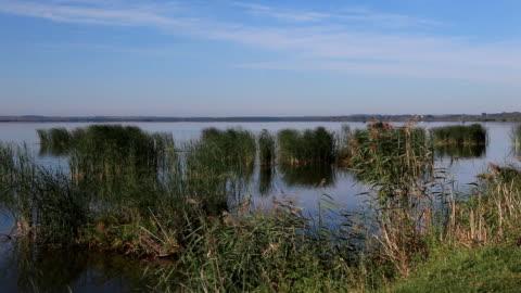 Morning on the lake Nero in Rostov Velikiy / Russia video