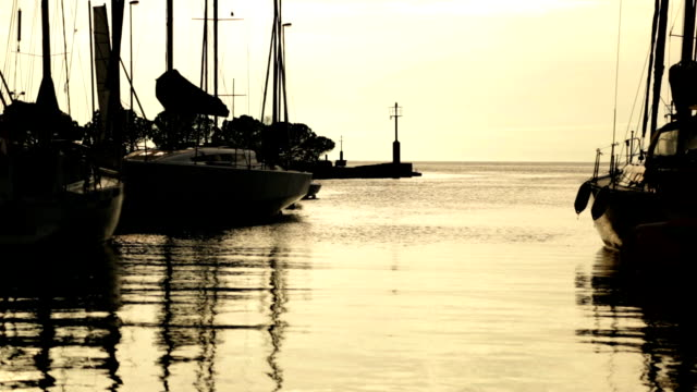 HD STOCK: Morning sunshine in the harbor full of sailboats video
