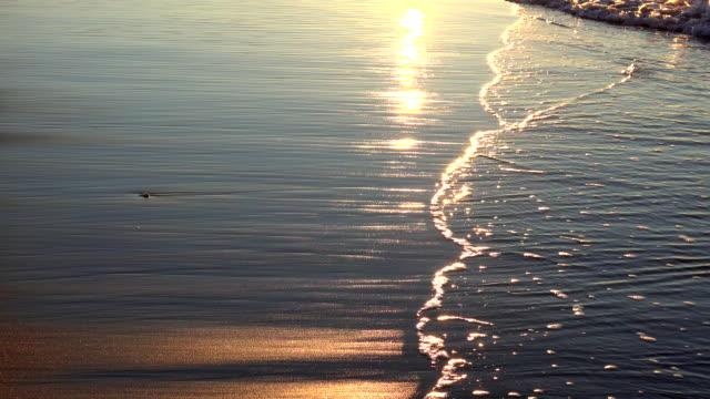 Morning wave at dawn