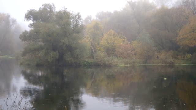 утром с туман над реки - спокойная вода стоковые видео и кадры b-roll
