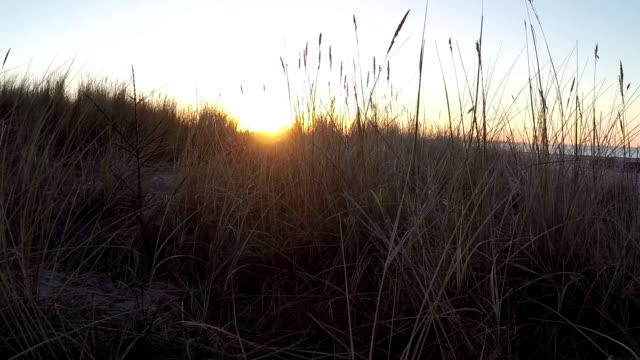 Morning Work video