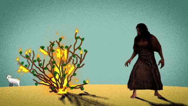 moses steht vor dem brennenden busch in der wüste mit lamm im hintergrund - tora stock-videos und b-roll-filmmaterial