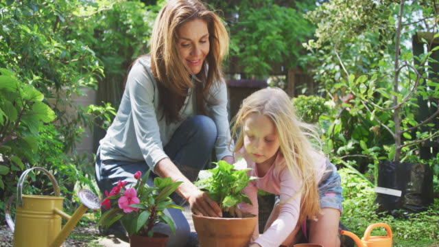 mother and daughter are replanting in the garden - gardino video stock e b–roll
