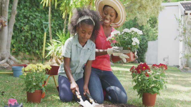 Mother and daughter gardening during a sunny day Front view of an African American woman having a good time in a garden, kneeling, planting flowers with her daughter, laughing, on a sunny day, in slow motion horticulture stock videos & royalty-free footage