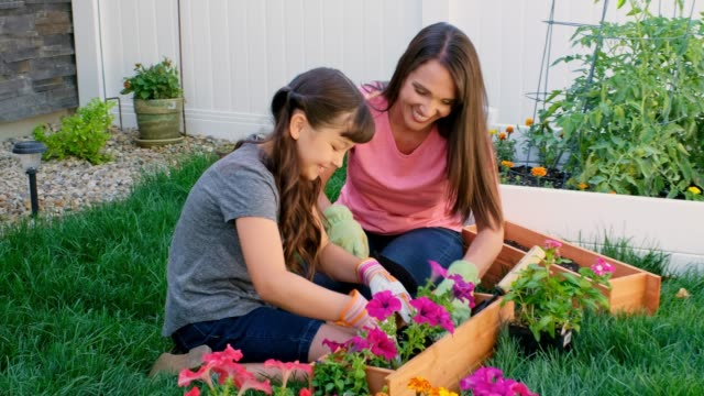 Mother and Daughter Gardening A mother and daughter work on a backyard garden in the springtime. flower pot stock videos & royalty-free footage