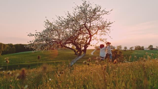 slo mo mor och dotter som hoppar på en kulle vid solnedgången - äppelblom bildbanksvideor och videomaterial från bakom kulisserna