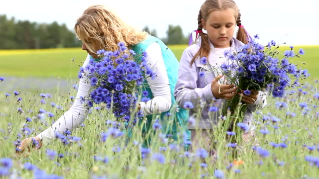 Mother and daughter picking flowers video