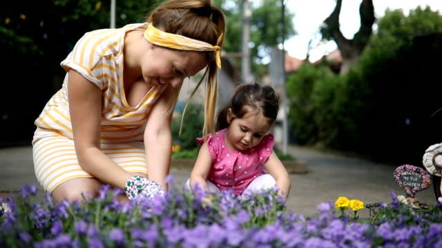 mutter und tochter, die blumen im garten pflanzen - urban gardening stock-videos und b-roll-filmmaterial