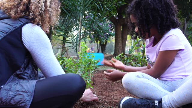 Mother and Daughter planting young tree on black soil as save world concept
