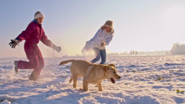 vídeos de stock e filmes b-roll de ts mãe e filha a correr com cão na neve - inverno