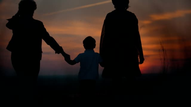 Mother and grandmother with little son walking on the summer field holding hands at sunset video