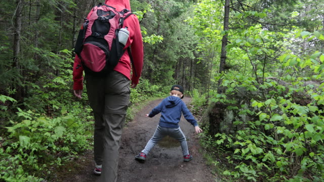 mother and son hiking in forest in summer - campeggio video stock e b–roll