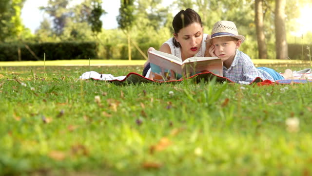 Mother and son spend time in the park in summer reading a book video
