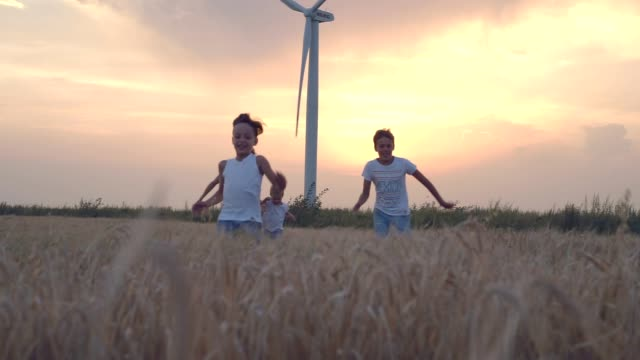 Mother and son walking in wheat field with wind turbines Mother and son walking in wheat field with wind turbines mill stock videos & royalty-free footage