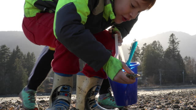 Mother and young boy find oysters on tidal flat