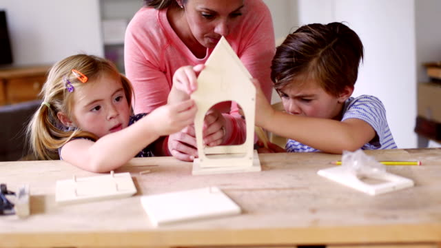 Mother Building a Birdhouse with her Children video
