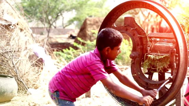 Mother & child cutting animal food using kutti machine - video