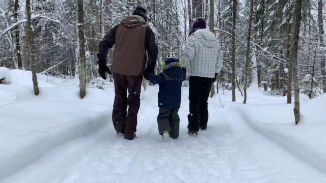 mother, grand father and son exploring forest on hiking trail in winter - trekking sul ghiaccio video stock e b–roll