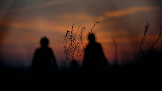 Mother, grandmother and little son holding hands walking on the grass at the summer sunset video