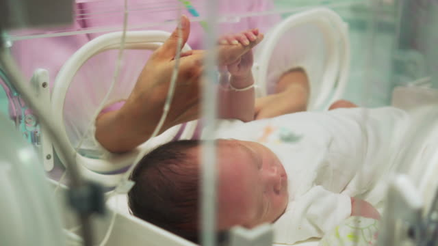 mother holding newborn baby's finger  in incubator - apparecchiatura medica video stock e b–roll